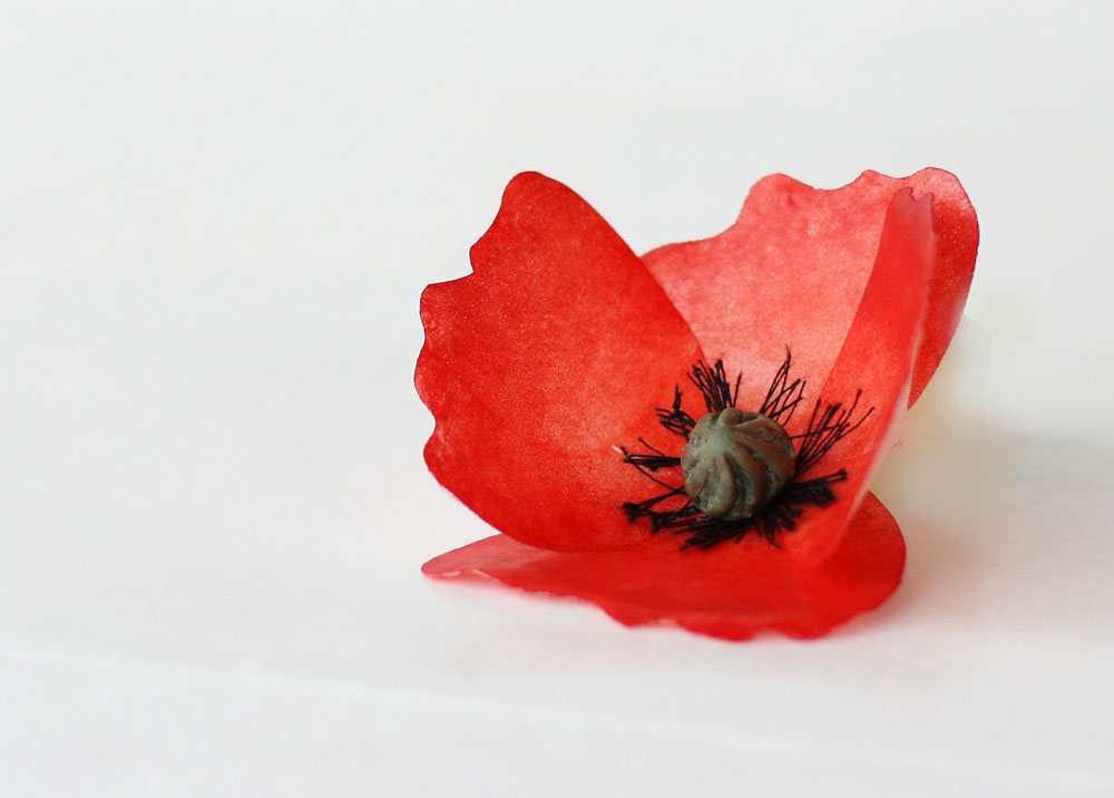 Poppy Cake Decorations